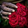 The Rose Seller archive
